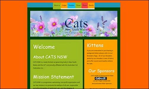 CATS NSW Shows